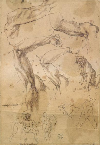 Ms H 184 fol 202 Studies of raised arms, a wild cat and a group of figures &