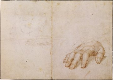 HANS HOLBEIN, 1532 | Study of Right Hand of Erasmus of Rotterdam and Portrait Study | ponta de prata , giz preto e sanguínea (20 × 28 cm) Louvre, Paris