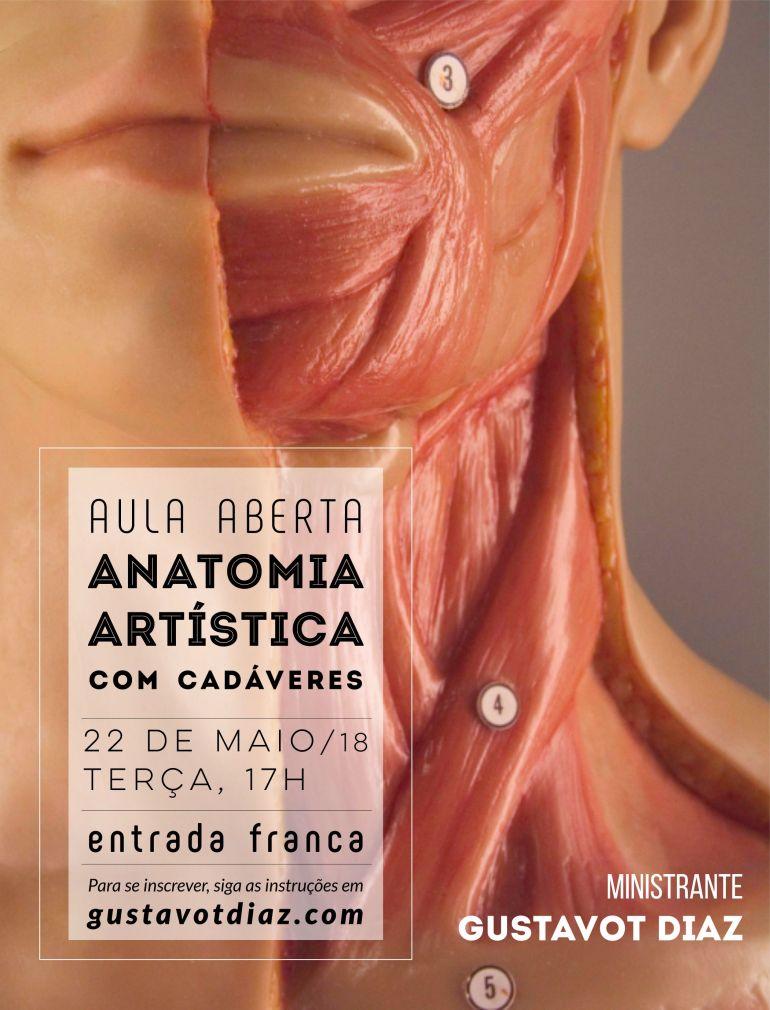 Aula gratuita Anatomia, 2018, I